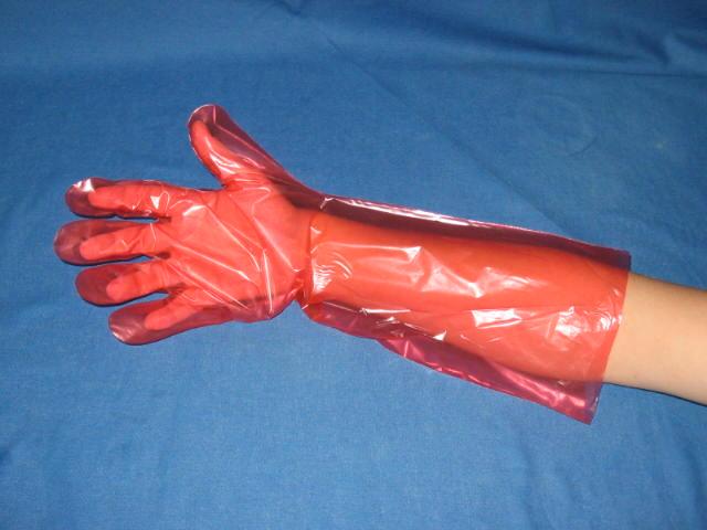 Wegwerphandschoenen PE rood